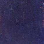 SM 6 •  1993 •  190 x 94 cm • Öl auf Leinwand