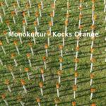 Monokultur - Kocks Orange